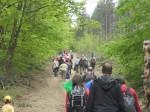 polski las Budapeszt