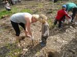 dzieci sadzą polski las w Budapeszcie