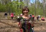 Polacy sadzą polski las w Budapeszcie