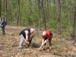 sadzenie polskiego lasu w Budapeszcie