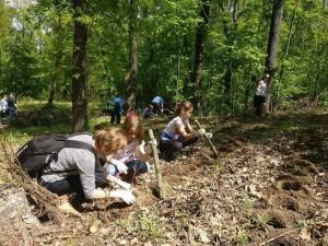 Jak znaleźć Polaków w Budapeszcie? Idź do lasu!
